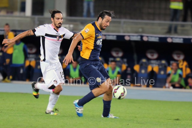 Hellas_Verona_-_Palermo_1461.JPG