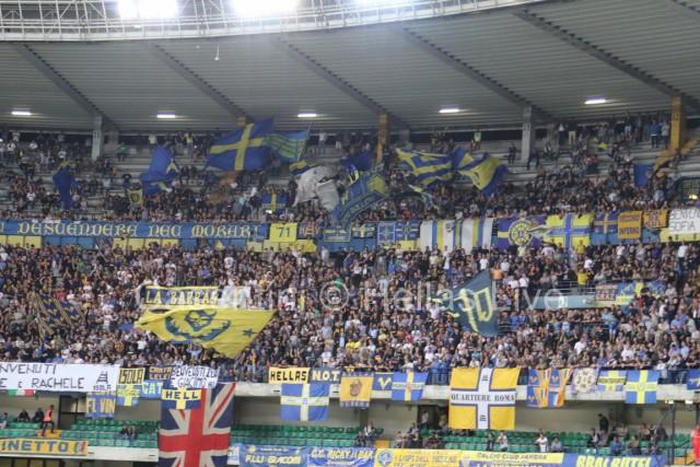 Hellas_Verona_-_Palermo_0518.JPG