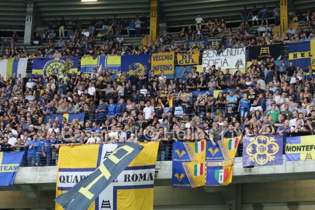 Hellas_Verona_-_Palermo_0604.JPG
