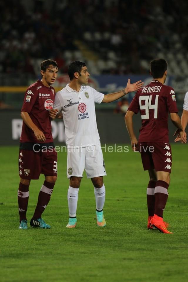 Torino_FC_-_Hellas_Verona_0409.JPG