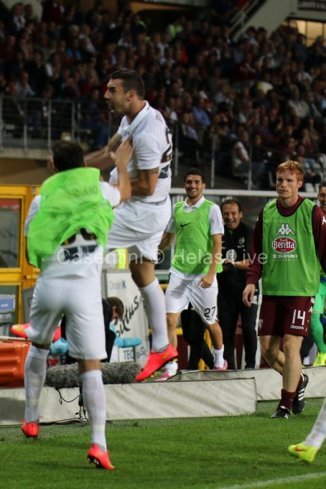 Torino_FC_-_Hellas_Verona_0712.JPG