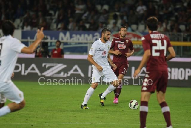 Torino_FC_-_Hellas_Verona_0859_-_Copia.JPG