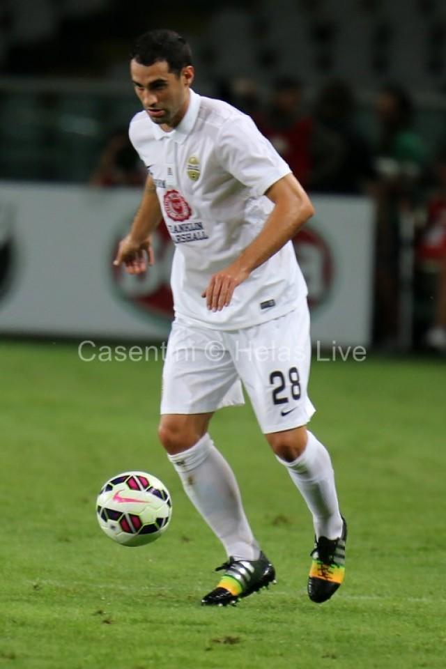 Torino_FC_-_Hellas_Verona_0419.JPG