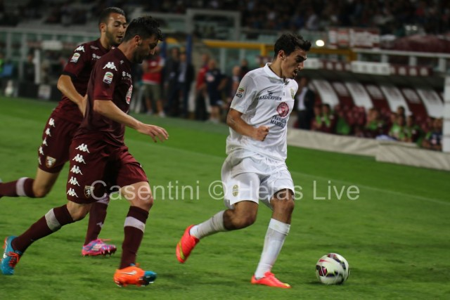 Torino_FC_-_Hellas_Verona_0511.JPG