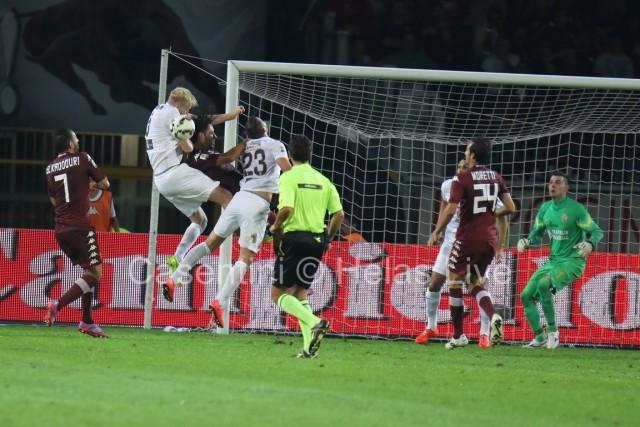Torino_FC_-_Hellas_Verona_1125_(2).jpg
