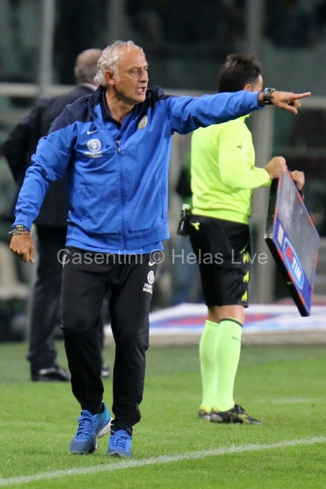 Torino_FC_-_Hellas_Verona_1083_-_Copia_-_Copia_-_Copia.JPG