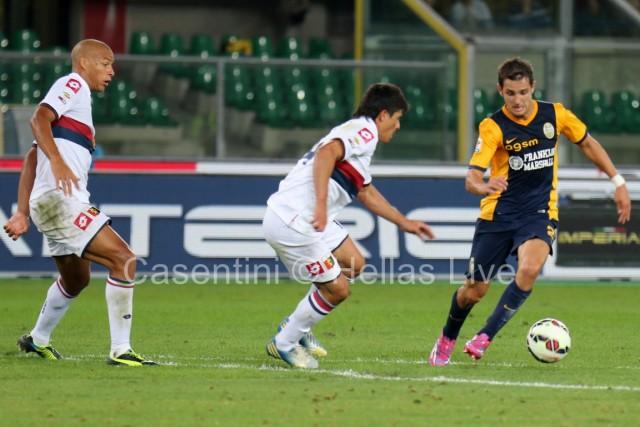 Hellas_Verona_-_CFC_Genoa_1376.JPG
