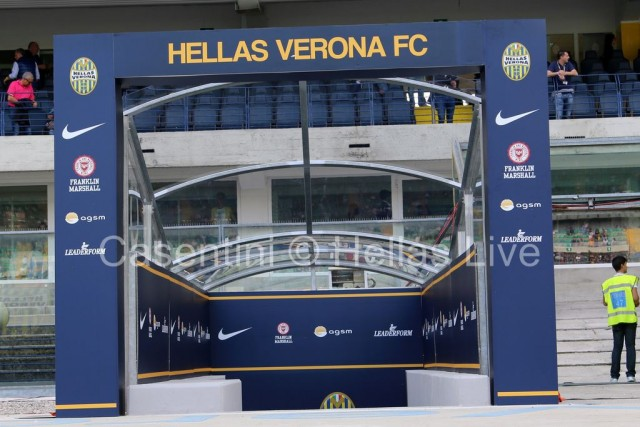 Hellas_Verona_-_AC_Milan_0147_.JPG
