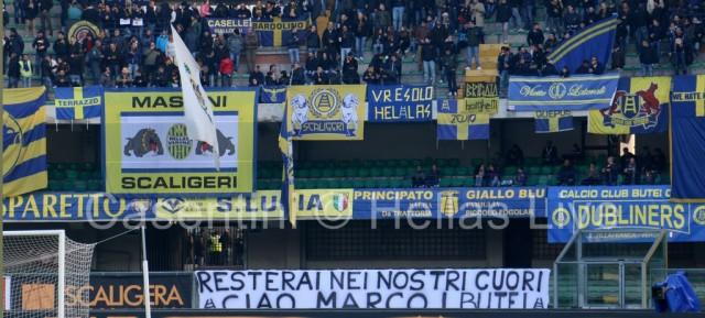 Hellas_Verona_-_ACF_Fiorentina_0253.JPG
