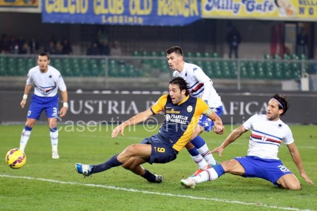 Hellas_Verona_-_US_Sampdoria_0794_.JPG