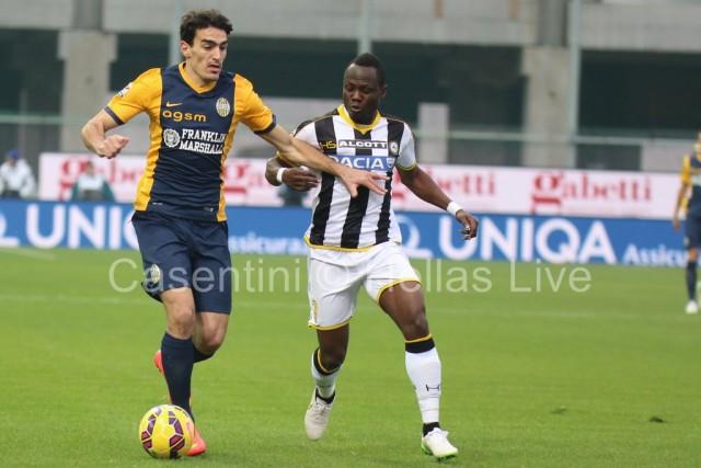 Udinese_-_Hellas_Verona_0206.JPG
