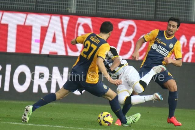 Udinese_-_Hellas_Verona_1633.JPG
