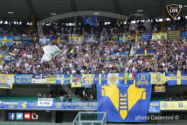 Hellas_Verona_-_Torino_FC_(1610).JPG