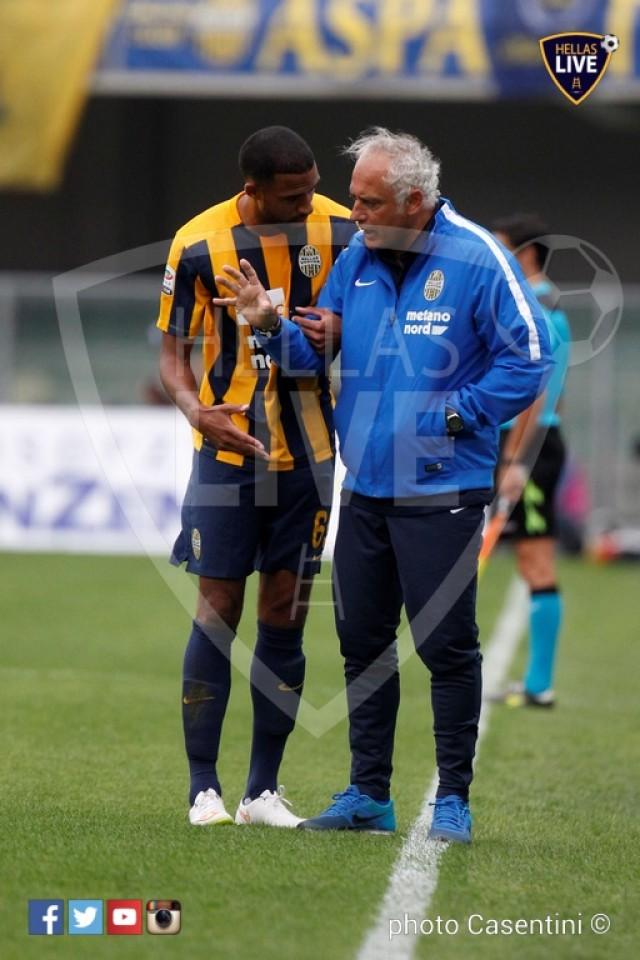 Hellas_Verona_-_Torino_FC_(930).JPG