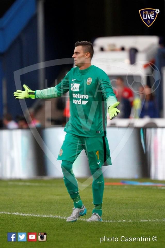 Hellas_Verona_-_Torino_FC_(1393).JPG