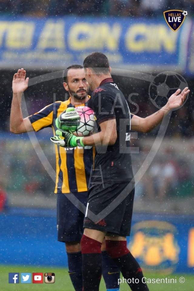 Hellas_Verona_-_Torino_FC_(2216).JPG