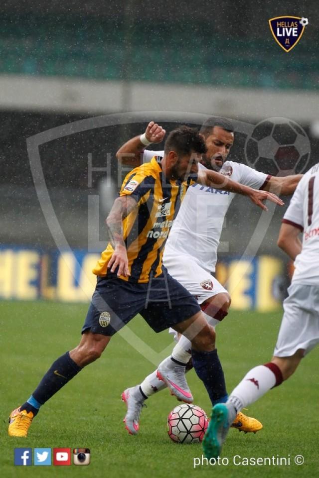 Hellas_Verona_-_Torino_FC_(1501).JPG