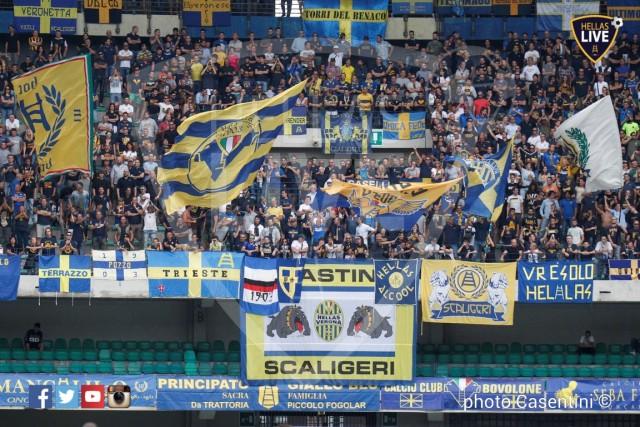 Hellas_Verona_-_Torino_FC_(1109).JPG