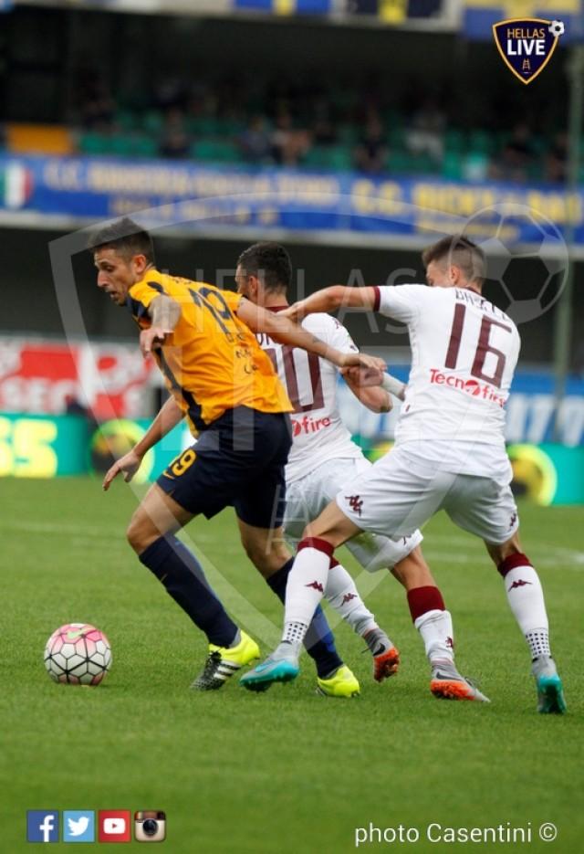 Hellas_Verona_-_Torino_FC_(1250).JPG