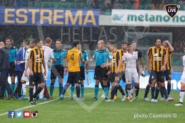 Hellas_Verona_-_Torino_FC_(2348).JPG