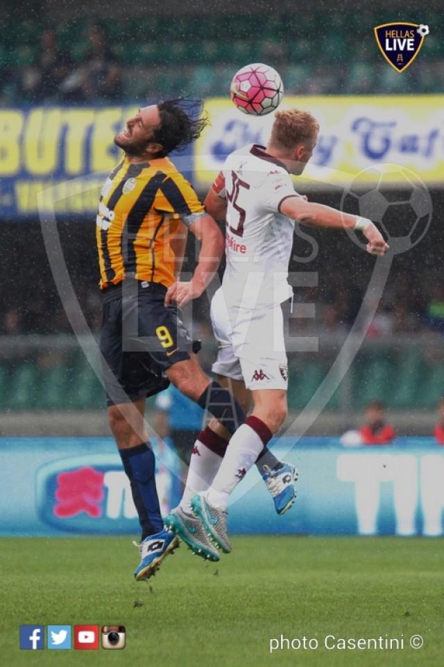 Hellas_Verona_-_Torino_FC_(2150).JPG