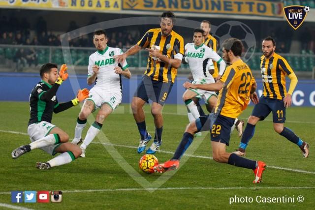 Hellas_Verona_-_Sassuolo_(2855).jpg