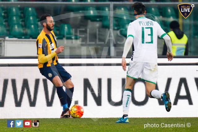 Hellas_Verona_-_Sassuolo_(2558).jpg