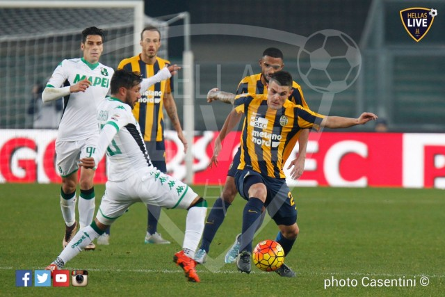 Hellas_Verona_-_Sassuolo_(2263).jpg