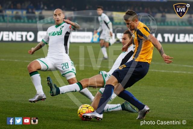 Hellas_Verona_-_Sassuolo_(2301).jpg