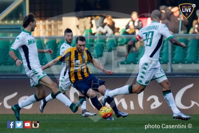 Hellas_Verona_-_Sassuolo_(535).jpg