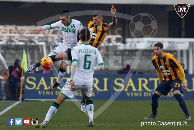 Hellas_Verona_-_Sassuolo_(482).jpg
