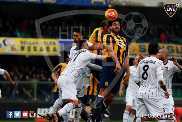 Hellas_Verona_-_US_Palermo_(1131).JPG