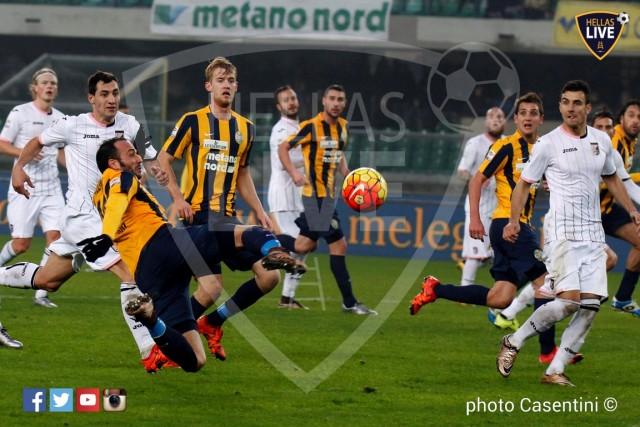 Hellas_Verona_-_US_Palermo_(2858).JPG