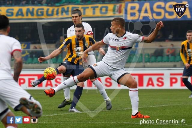 Hellas_Verona_-_Genoa_CFC_(891).JPG