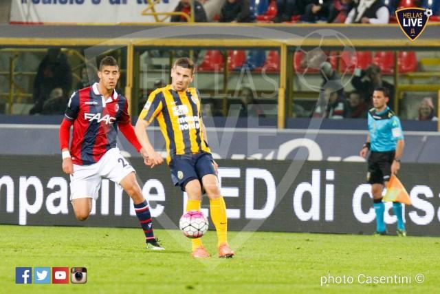 Bologna_-_Hellas_Verona_(902).jpg